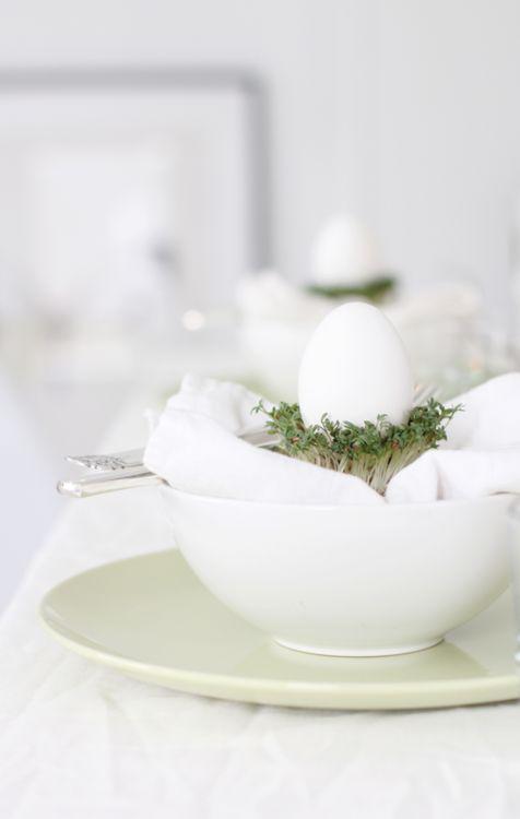 AAE - Easter14