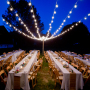 large-bistro-lights-outdoor-dinner